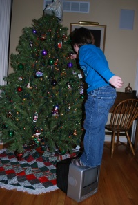 It really helped our grandson, Brycen, reach those areas that are typically out of reach for him so he could help with the tree!
