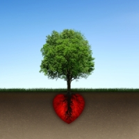 A Happy Heart Is Rooted in God's Love